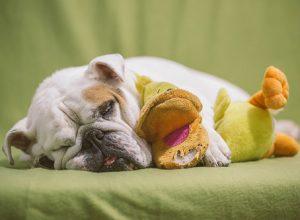 Mieux dormir et retrouver confiance en son sommeil